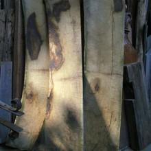 3 oak waney edge boards 1