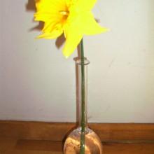 Vases upcycled laboratory bowl test tubes