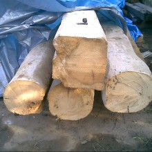 Large pine beams 10